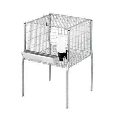 Vista de una jaula para pollos de engorde: 1 departamento