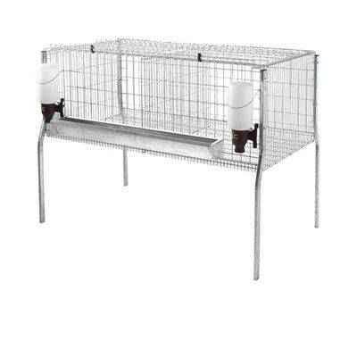 Vista de una jaula para pollos de engorde