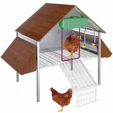 eco gallinero exterior