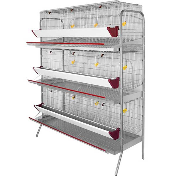 Vista de una jaula para aves de corral
