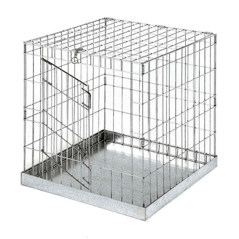 jaula de exposición para gallinas y gallos con puerta