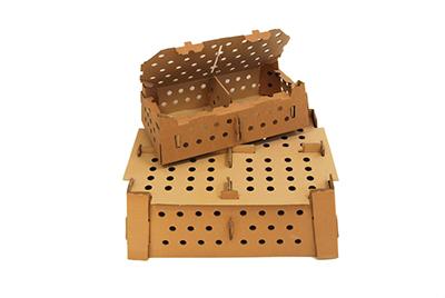 Vista de una caja de cartón para transporte de pollitos