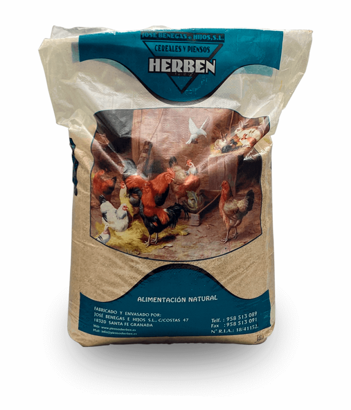 maiz-entero