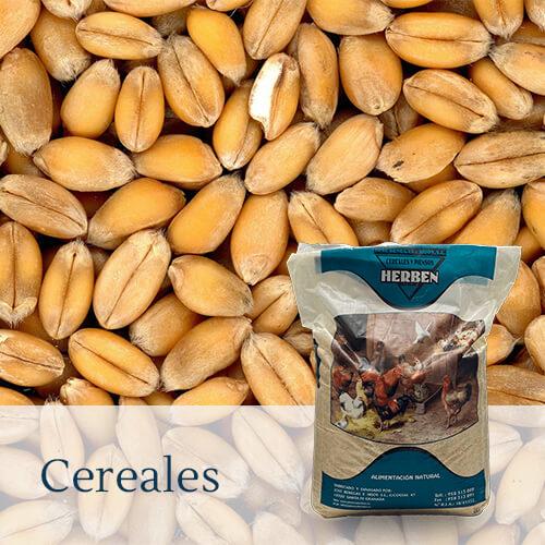 Alimentación Cereales