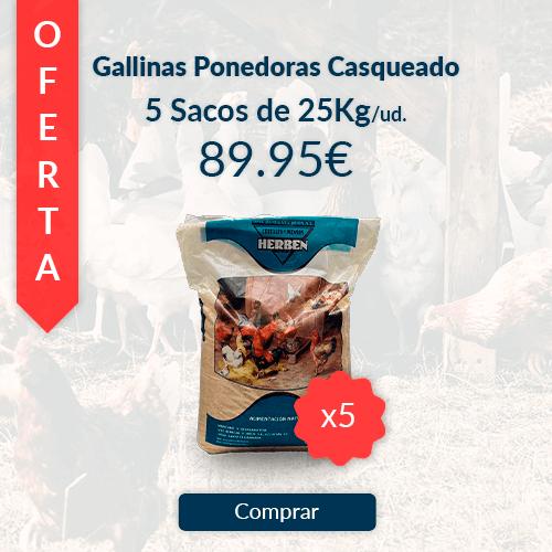 Comprar 5 sacos de 25kg de pienso casqueado para gallinas ponedoras