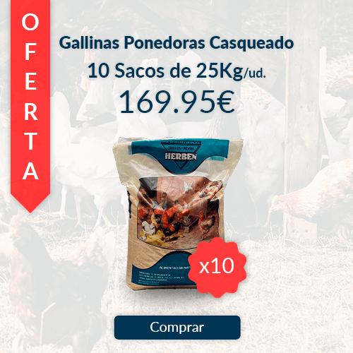Comprar 10 sacos de 25kg de pienso casqueado para gallinas ponedoras